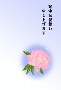 寒中見舞いー牡丹(文字なし)