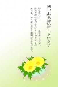 寒中見舞いー福寿草1